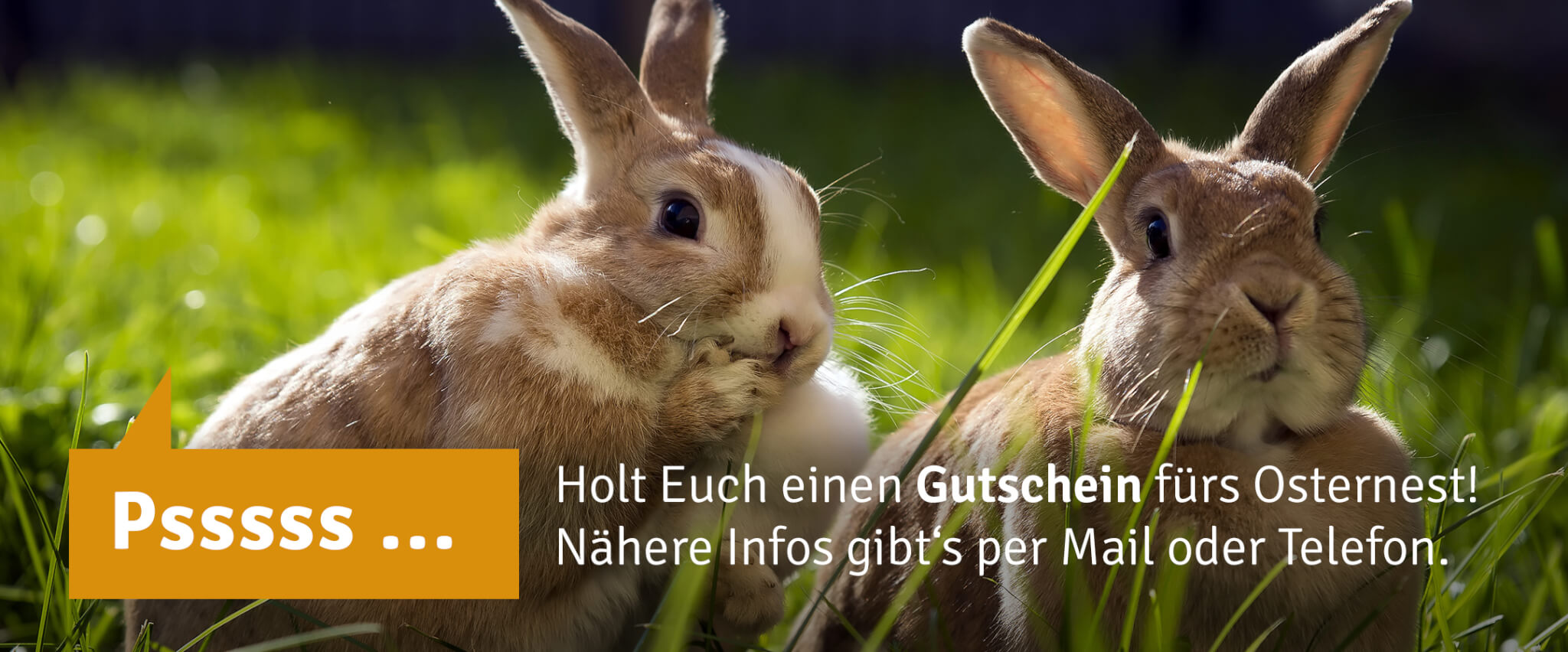 KK_20Ostern_Gutschein_Webslider